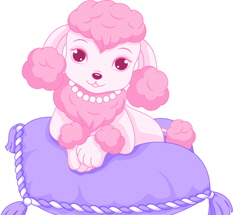 Pink Poodle Party